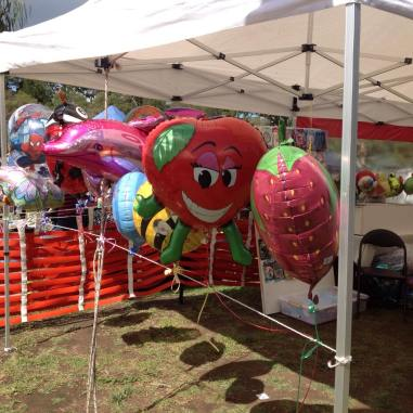 Wallington Strawberry Fair Balloons